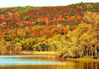 Mountain Foliage Series 067 Art Print