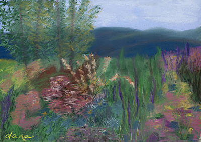 Mountain Garden Art Print by Dana Strotheide