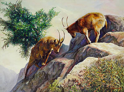 One Horned Painting - Mountain Goats - Powerful Fight  by Svitozar Nenyuk