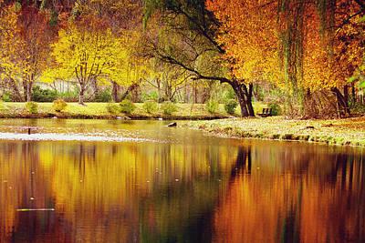 Photograph - Mountain Lake Fall Reflections by Gray  Artus