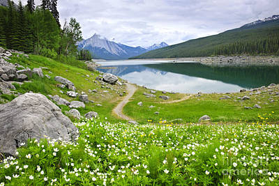 Mountain Lake In Jasper National Park Canada Art Print by Elena Elisseeva