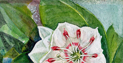 Wall Art - Painting - Mountain Laurel Blossom by Elle Smith Fagan