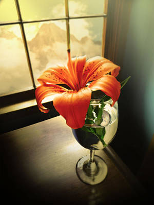 Mountain Lily Art Print