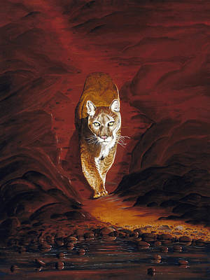 Painting - Mountain Lion by Carl Genovese