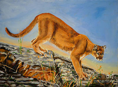 Painting - Mountain Lion by Jock McGregor