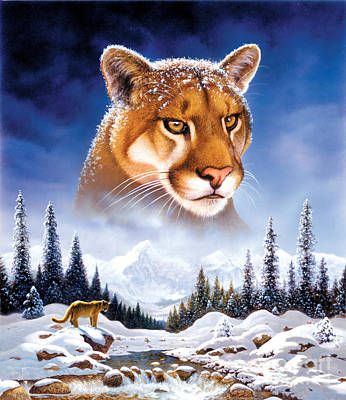 Mountain Lion Art Print by MGL Studio - Chris Hiett