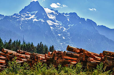 Photograph - Mountain Logging by Kelly Reber