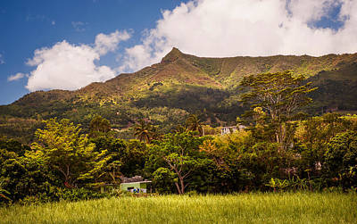 Mountain Mauritian Landscape Print by Jenny Rainbow