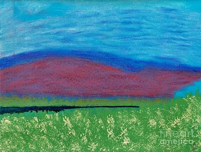 Florida Flowers Drawing - Mountain - Meadow - Abstract by D Hackett