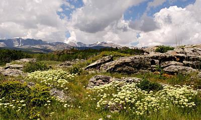 Photograph - Mountain Meadow  by Dakota Light Photography By Dakota