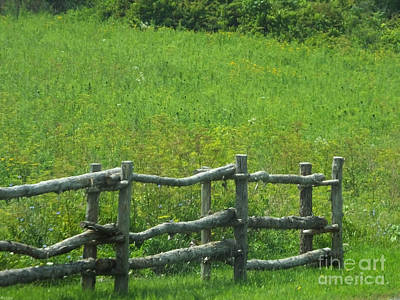 Photograph - Mountain Meadow New York Hwy 30 by Lizi Beard-Ward
