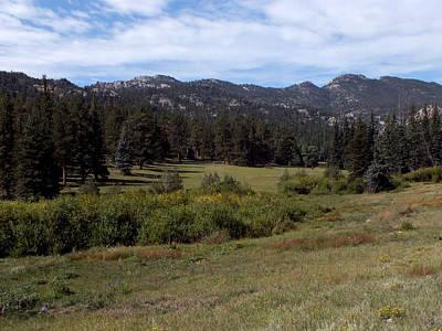 Photograph - Mountain Meadow by Thomas Samida