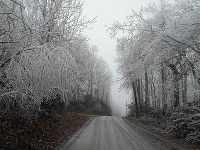 Photograph - Mountain Morning Icy Commute by Diannah Lynch