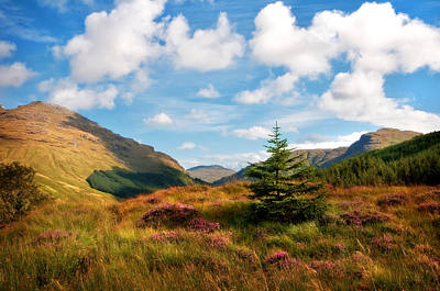 Mountain Pastoral. Rest And Be Thankful. Scotland Art Print by Jenny Rainbow