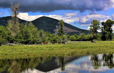 Mountain Pasture Art Print