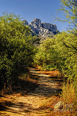 Mark Myhaver Royalty Free Images - Mountain Path 27 Royalty-Free Image by Mark Myhaver