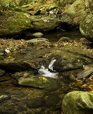 Photograph - Mountain Pools by Bonnie Leigh Delar