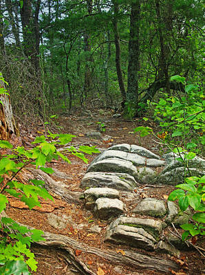 Photograph - Mountain Ridge Trail by Melinda Fawver