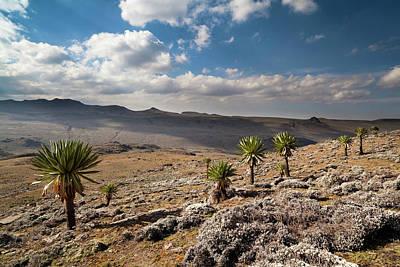 Bale Photograph - Mountain Ridge With Mount Batu by Martin Zwick