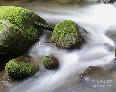 Photograph - Mountain River by Susan Cliett