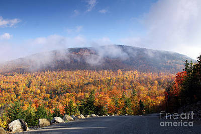 Photograph - Mountain Road by Butch Lombardi