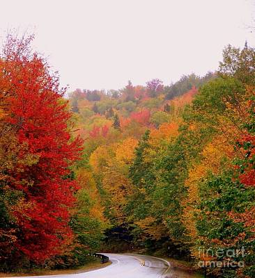 Photograph - Mountain Road In Fall by Eunice Miller
