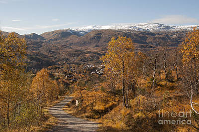 Sun Photograph - Mountain Road In Fall by Gry Thunes