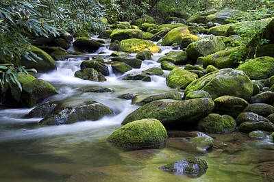Mountain Stream 1 Art Print by Larry Bohlin
