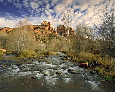 Cathedral Rock Photograph - Mountain Stream By Cathedral Rock In Sedona Arizona by Randall Nyhof
