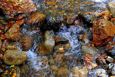 Photograph - Mountain Stream In Autumn by Eunice Miller