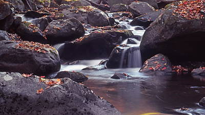Photograph - Mountain Stream by Harold Rau