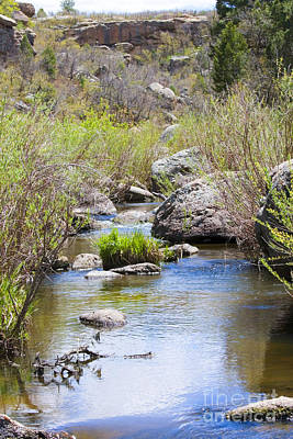 Steven Krull Royalty-Free and Rights-Managed Images - Mountain Stream in Castlewood Canyon State Park by Steven Krull