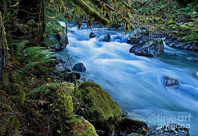 Mountain Stream In Forest - Nooksack River Washington Art Print by Valerie Garner