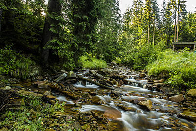 Spring Scenery Photograph - Mountain Stream by Jaroslaw Grudzinski