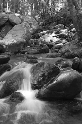 Mountain Stream Monochrome Art Print by Larry Bohlin