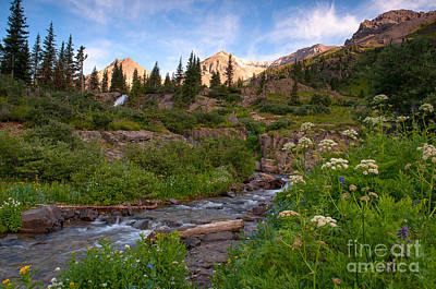 Photograph - Mountain Stream by Steve Stuller