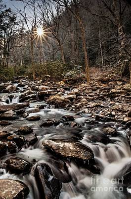 Art Print featuring the photograph Icy Mountain Stream by Debbie Green