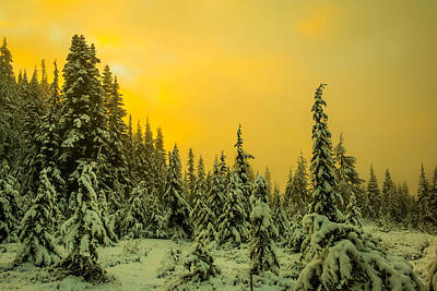 Mountain Royalty-Free and Rights-Managed Images - Mountain Sunrise by Ryan McGinnis