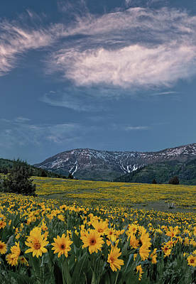 Photograph - Mountain Sunset In Spring by Leland D Howard