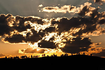 Wall Art - Photograph - Mountain Top Alight by Diana Marcoux