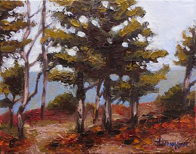 Mountain Top Pines Art Print by Jason Williamson