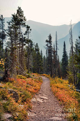 Photograph - Mountain Trail by Jill Battaglia