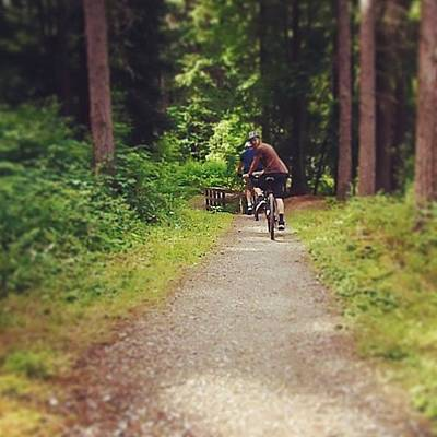 Woodland Photograph - #mountainbike#woodland #wood #forest by Vicky Combs