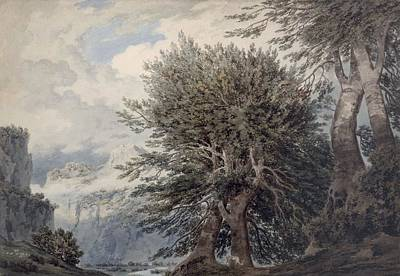 Wintry Drawing - Mountainous Landscape With Beech Trees by John Robert Cozens