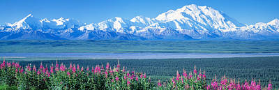 Mountains & Lake Denali National Park Print by Panoramic Images