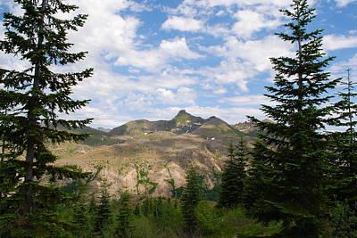 Photograph - Mountains And Fir Trees by Robert  Moss