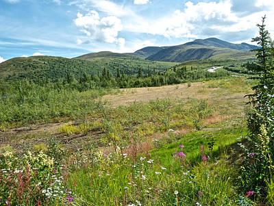 Mountains And Wildflowers Along  Taylor Highway-ak  Art Print