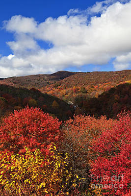 Photograph - Mountains At Graveyard Fields by Jill Lang