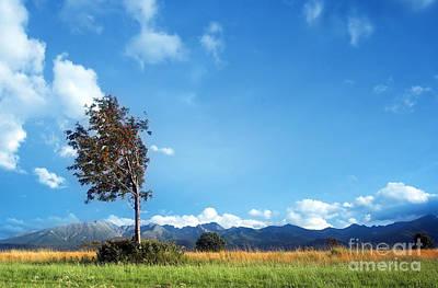 Meadow Photograph - Mountains Landscape by Michal Bednarek