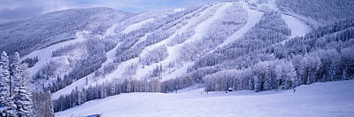 Run Photograph - Mountains, Snow, Steamboat Springs by Panoramic Images
